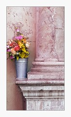 Bucket pronounced bouquet (overthemoon) Tags: switzerland suisse schweiz svizzera romandie vaud lausanne placedelapalud hôteldeville townhall stone pink bucket zinc flowers bouquet phone frame
