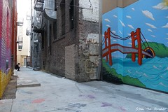 SF Chinatown - 062818 - 02 (Stan-the-Rocker) Tags: stantherocker sony ilce sanfrancisco northbeach chinatown street sel18135