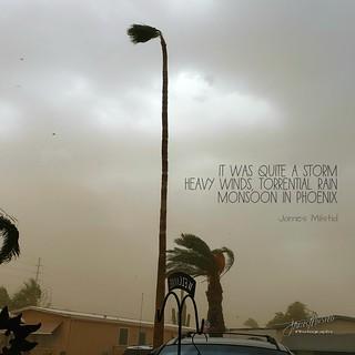 187/365 - Daily Haiku: Monsoon