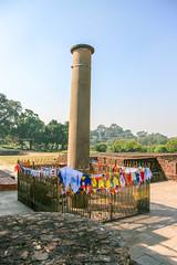 Ashoka pillar (RunningRalph) Tags: lumbini nepal lumbinisanskritik westerndevelopmentregion np
