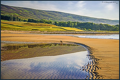 Landscape & ReflectionsDSC_1607 copy (dark-dave) Tags: reflections dog coast coastal scotland