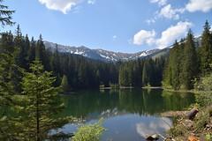 Perfect spot (petrOlly) Tags: europe europa slowakei slovakia slovensko słowacja sk2018 vrbickémountainlake nature natura przyroda water landscape
