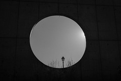 Paseo por el parque (carlosgsanmillan) Tags: paseo walk tarde sunset blanco negro black white canon madrid españa spain park circulo circle sombra sadow photo art arquitecture