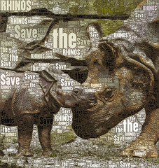 Save the Rhinos (Susan Maxwell Schmidt) Tags: savetherhinos rhinoceros motherandbaby africanwildlifepreservation wildanimal natureconservation criticallyendangeredspecies rhinocerotidae perissodactyl susanmaxwellschmidt activism words type typography tropicalrainforestinhabitant onehorn twohorned blackrhino javan sumatran sumatra java indian vietnam asia southafrica india asianherbivore southernwhite northern tanzania zambia zimbabwe mozambique namibia botswana angola nepal indonesia malasia unicornis mammal jungle tropics creature earthycolors green brown beige