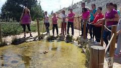 Visita-Area-Recreativa-Puerto-Lobo-Escuela Hogar-Asociacion-San-Jose-Guadix-2018-0012 (Asociación San José - Guadix) Tags: escuela hogar san josé asociación guadix puerto lobo junio 2018