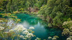 fantastic lake (hjuengst) Tags: plitvicerseen lake nationalpark jezera waterfall green turquoise kroatien croatia