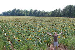 onthetraciksunfieldd (FAIRFIELDFAMILY) Tags: winnsboro train depot station granite blue fairfield county sc south carolina sunflower field jason taylor grant yellow pretty outside farm farming nature young old architecture stone brick building store town southern living garden gun fun flower flowers summer life boy warehouse