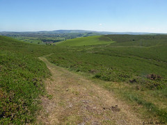 Glyndwr's Way 042 (Row 17) Tags: wales unitedkingdom greatbritain powys nationaltrail footpath hillside hills rural lumix panasonic
