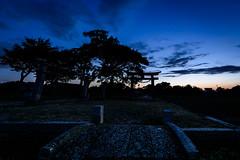 鳥居のある情景 #3ーScenery with torii #3 (kurumaebi) Tags: yamaguchi 秋穂 山口市 nikon d750 nature landscape 田んぼ 田 神社 鳥居 torii