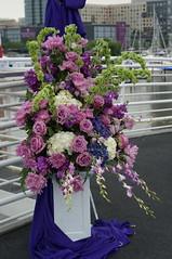 DSC05895 (RosieTulips) Tags: flowers aquaazul libertylandingmarina