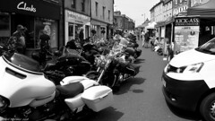 Big bikes and strong cheese (Neil. Moralee) Tags: alnwick2018neilmoralee neilmoralee bike motorcycle cycle motor harley davidson cheese cheddar alnwick street charity northumberland black white bw blackandwhite mono monochrome neil moralee olympus omd em5 sunny contrast free uk