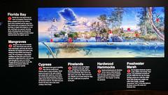 Everglades NP | 2017.12.02 | 1202171231 (Kaemattson) Tags: everglades evergladesnationalpark evergladesnp homestead miami fl florida homesteadfl miamifl floridabay mangroves cypress pinelands hardwoodhammocks freshwatermarl riverofgrass prairie ernestfcoevisitorcenter ernestfcoe ernest coe