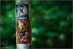 schräg, schäger, ... Supersteech (geka_photo) Tags: gekaphoto kiel schleswigholstein deutschland ellerbek laterne sticker aufkleber supersteech