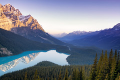 Tranquility (gwendolyn.allsop) Tags: peyto lake jasper national park canada alberta blue water glacial morning sunlight glow mountains view landscape forest d5200