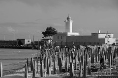 Il faro di Manfredonia (paolotrapella) Tags: faro manfredonia italy bw biancoenero puglia gargano beach spiaggia ombrelloni