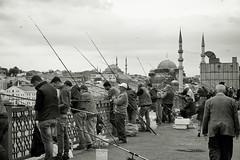 Pescadores del Gálata (osolev) Tags: puente bridge pont gálata yeni yenicamii mezquitanueva mezquita mosque mosquee camii estambul istanbul pescadores pecheurs fishermen alminar minarete minaret bn bw wb turquia turquie turkey europe europa otoman otomano ps cs5 eminonu karakoy koprusu