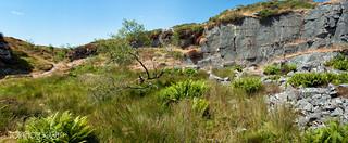 Haytor Quarry Panorama