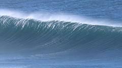 2018.07.15.08.49.03-Tama left-001 (www.davidmolloyphotography.com) Tags: bodysurf bodysurfing bodysurfer bronte sydney newsouthwales australia surf surfing wave waves