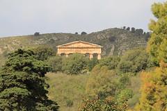 IMG_7991 (Vito Amorelli) Tags: segesta sicily dorictemple greektheater