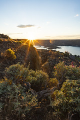 Steamboat Rock (bombeeney) Tags: sunrise sun desert easternwashington channeledscablands grandcoulee bankslake sagebrush