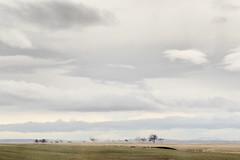 Passing Views 1 (pni) Tags: cloud view landscape mountain hill field fell tree road37 frombuswindow is18 iceland ísland pekkanikrus skrubu pni