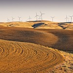 Late Day Plowed Fields and Windmills 9516 E thumbnail