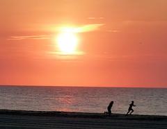 Ocean City Sunrise 2 ~ July (Rain Love AMR) Tags: sun sunrise beach ocean silhouette