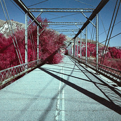 bridge out (color infrared). piru, ca. 2017. (eyetwist) Tags: eyetwistkevinballuff eyetwist abandoned bridge piru california film analog colorinfrared mamiya 6mf 50mm color infrared ir cir cir120 russian ishootfilm mamiya6mf mamiya50mmf4l colorinfraredcir analogue mamiya6 square 6x6 120 filmexif iconla epsonv750pro lenstagger mediumformat bw 022 yellow yellow022 filter magenta blue landscape derelict american west rural decay desolate lonely trees americantypologies girders truss twolane doubleyellow closed bridgeout pirucreek newhall