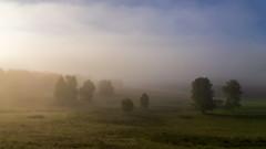 Туман, туманище #своифото, #пейзаж, #природа, #утро, #рассвет, #дерево, #натура, #восход, #sunrise, #nature, #tree, #Landscape, #sun, #туман, #лучи, #foggy, (ЛеонидМаксименко) Tags: пейзаж восход утро лучи foggy tree nature landscape природа натура дерево sun рассвет своифото туман sunrise