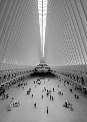 WTC Oculus (364) (Sanyam Bahga) Tags: d7000 1024 usa newyork newyorkcity nyc manhattan financialdistrict worldtradecenter worldtradecentertransportationhub santiagocalatrava calatrava architecture blackandwhite oculus wtc