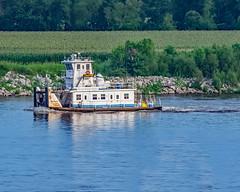 BB__1402edD (mjrinstl@ymail.com) Tags: bellerivepark saintlouismo livemusic outdoormusic bluegrassmusic thegreers carondelet thegreersbluegrassacousticmusicband riverboat tugboat mississippiriver