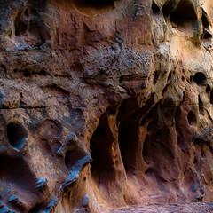 In Canyons 249 (noahbw) Tags: capitolreefnationalpark d5000 grandwash nikon utah abstract autumn canyon cliffs desert erosion landscape light natural noahbw rock slotcanyon square stone