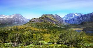 Jotunheimen Nasjonalpark