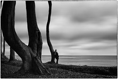 She is thinking of you (ingrid.lowis) Tags: bw schwarz weis m kühlungsborn ostsee baltic sea