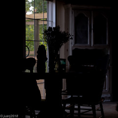 Kitchen Silhouette (JuanJ) Tags: nikon d850 lightroom art bokeh nature lens light landscape white green red black pink sky people portrait location architecture building city iphone iphoneography square squareformat instagramapp shot awesome supershot beauty cute new flickr amazing photo photograph fav favorite favs picture me explore interestingness wedding party family travel friend friends vacation beach kitchen table flowers kentucky georgetown scottcounty silhouette 2018 july house chair tamron