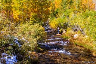 Bishop Creek in the Eastern Sierra