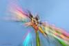 Fête foraine, Poitiers, France (֍ Bernard LIÉGEOIS ֍) Tags: fêteforaine funfair nuit night poselongue poselente longexposure couleurs colours lumières lights poitiers poitoucharentes manèges mickeymouse