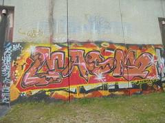301 (en-ri) Tags: magma film rosso giallo marrone rosa nero torino wall muro graffiti writing parco dora