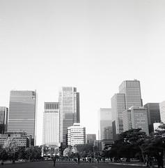 Rolleiflex_Japon_Fuji_Acros_100_002 (franherrera) Tags: rolleiflex rolleiflex28c acros fujifilmneopanacros blancoynegro blackwhite blackandwhite mediumformat mediumformatphotography formatomedio formatocuadrado squareformat oldcameras vintagephotography japón japan tokyo tokio