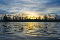 Sunset on the water (JSB PHOTOGRAPHS) Tags: dsc0030 pond sunset nikon d7000 trees sky bluesky eugeneoregon autzenstadium on1photoraw