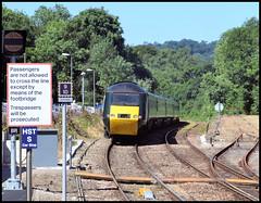 43016 (R~P~M) Tags: train cornwall kernow england uk unitedkingdom greatbritain railway diesel locomotive hst 43 125 gwr greatwestern bodminparkway