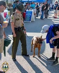 VSP LakeMonsters 2018-3 (Vermont State Police) Tags: 2018 btv burlington chittendencounty greenmountainstate lakemonsters vsp vt vtstatepolice vermont vermontstatepolice
