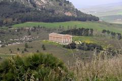 IMG_8055 (Vito Amorelli) Tags: segesta sicily dorictemple greektheater