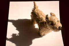 Old Dog-No Tricks @Toys (Sarah_ES) Tags: weeklythemechallenge toys dog shadow old