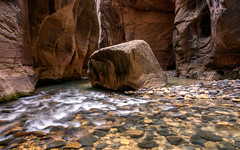 Zion Narrows Standing Strong (PatrickPrager) Tags: zion utah narrows water river mountains nikon d7100 longexposure