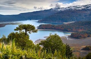 Lago Conguillio - Parq. Nac. Conguillio (Norpatagonia Chile)