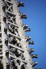 DSC09658 - Burgos (HerryB) Tags: 2018 europa europe bechen fotos photos photography fotografie herryb heribertbechen sony 99v 77v alpha stadt ville town spain spanien espana hafermann hafermannreisen rundreise nordspanien burgos kastilien kastilienleon pilgerweg camino kathedrale gotik gothic
