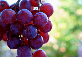 Grapes of macro ... :-))