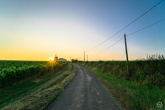 Route des vins (PaaulDvD) Tags: chalonnes loire layon loirevalley sunset vigne wine vin colors blue sun unesco