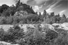 18-206 (lechecce) Tags: 2018 landscapes nature blackandwhite flickraward